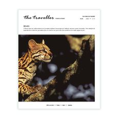 The Traveller nº 98