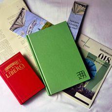 O livro de Líbero, de Alfredo Nugent Setubal