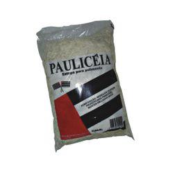 Estopa para Polimento Pauliceia - 400g