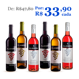 Kit 6 Vinhos Alandra