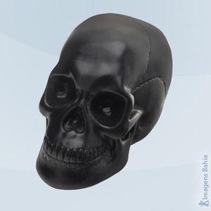 Imagem de Cranio Caveira (Osso)