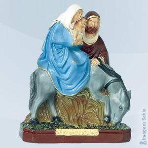 Nossa Senhora do Desterro, 20cm