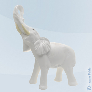 Imagem de Elefante branco