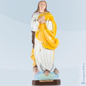 Nossa Senhora Conceição (Amarela), 20cm