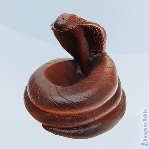 Imagem de Cobra