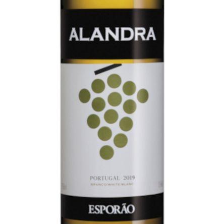 Alandra Branco