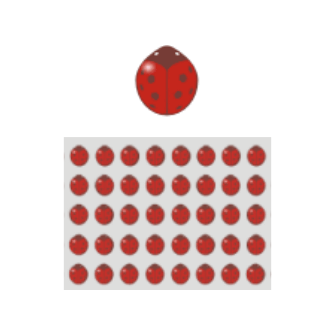 Blister Joaninha Vermelha (40uni)