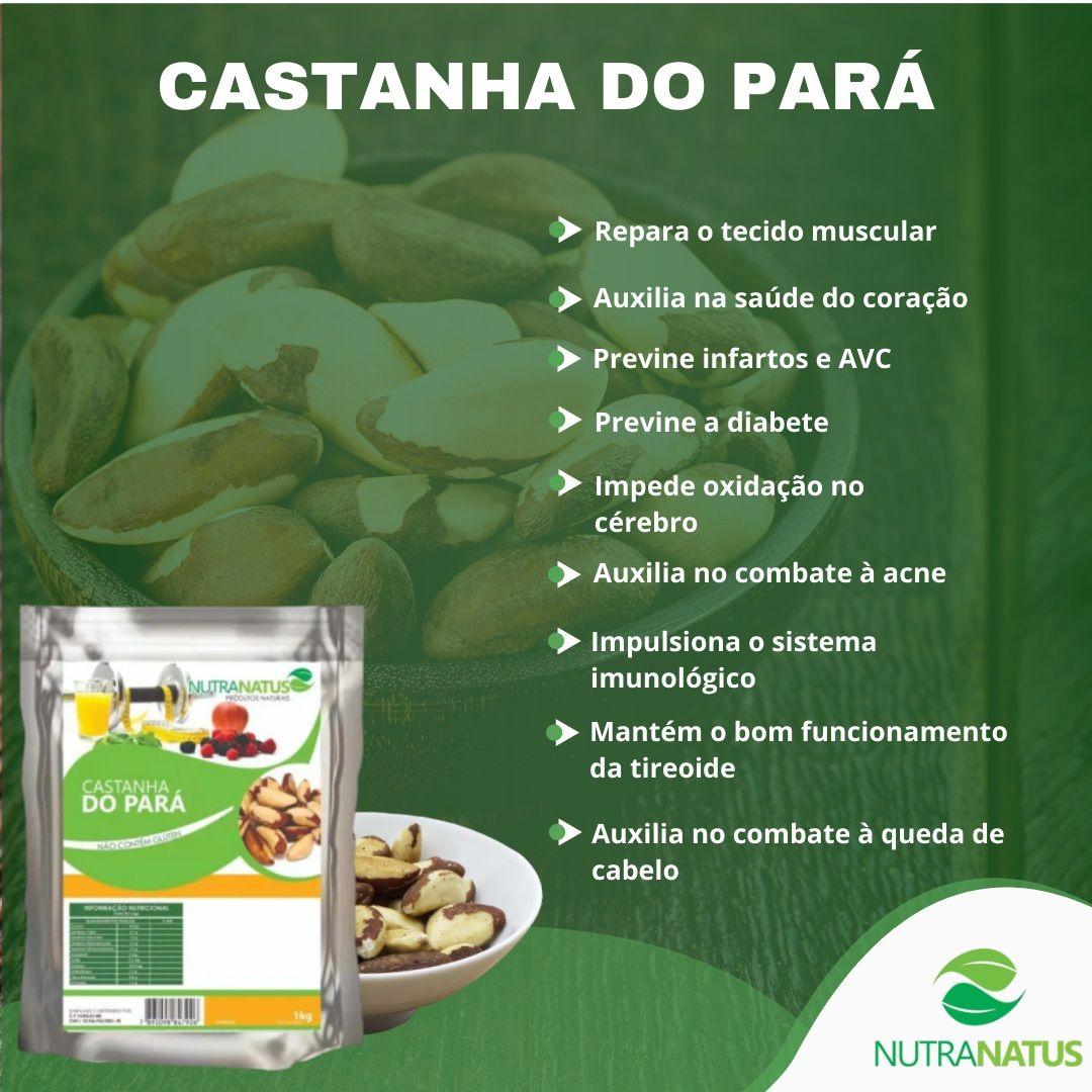 Castanha Do Pará Inteira Média 2kg Castanha Brasil