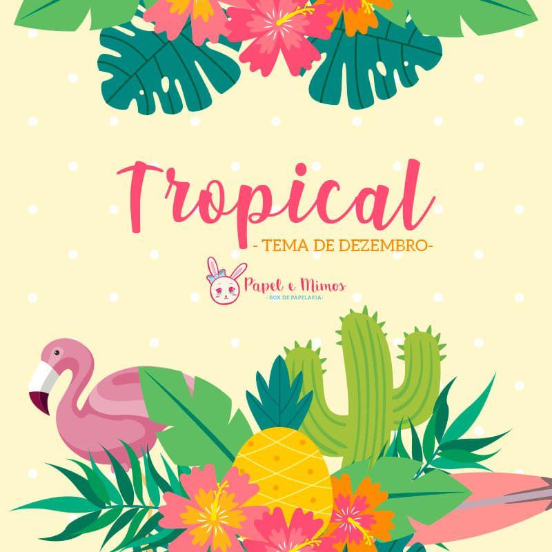 Box Tropical