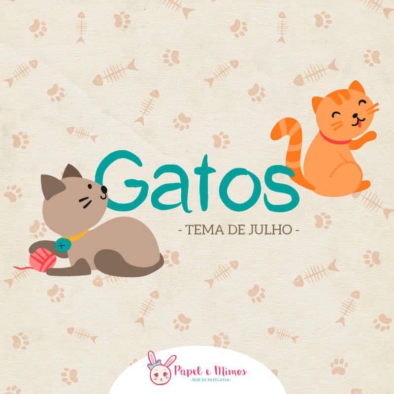 Box Gatos