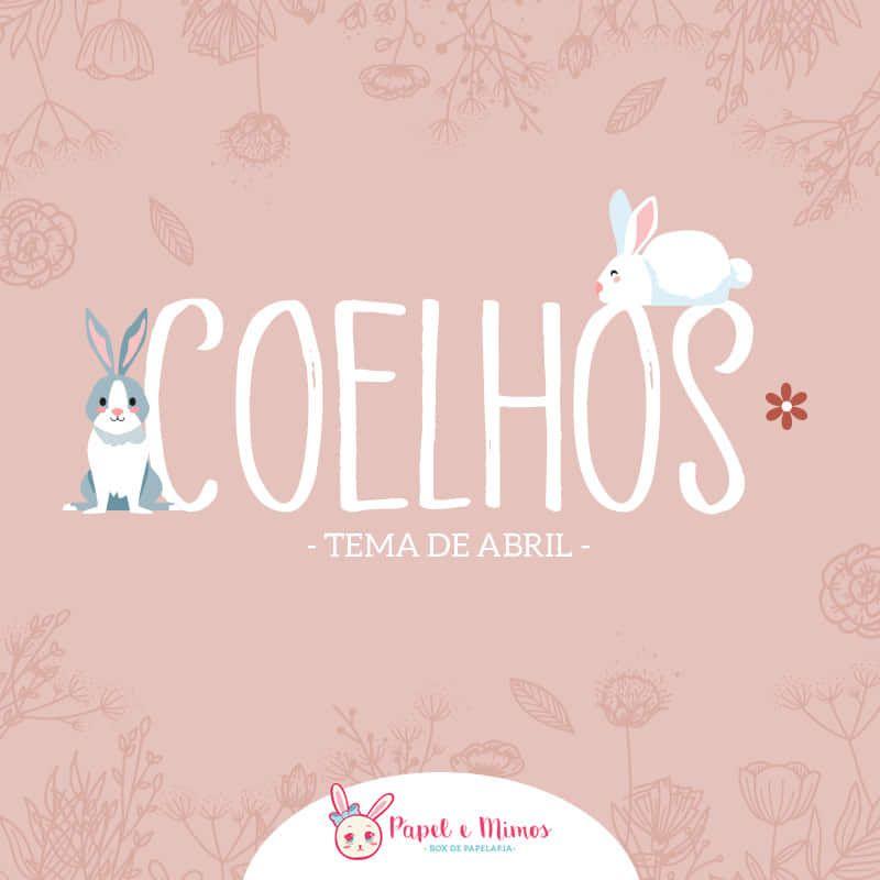 Box Coelhos