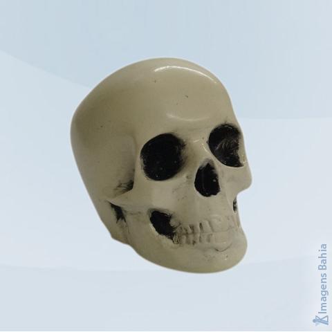 Imagem de Caveira Mini em resina