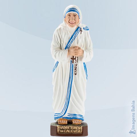 Imagem de Santa Madre de Calcutá
