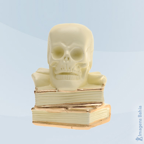 Imagem de Crânio sobre livros (Osso)
