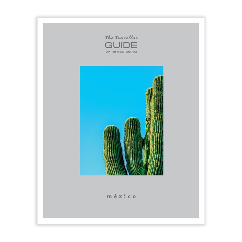 The Traveller Guide - México