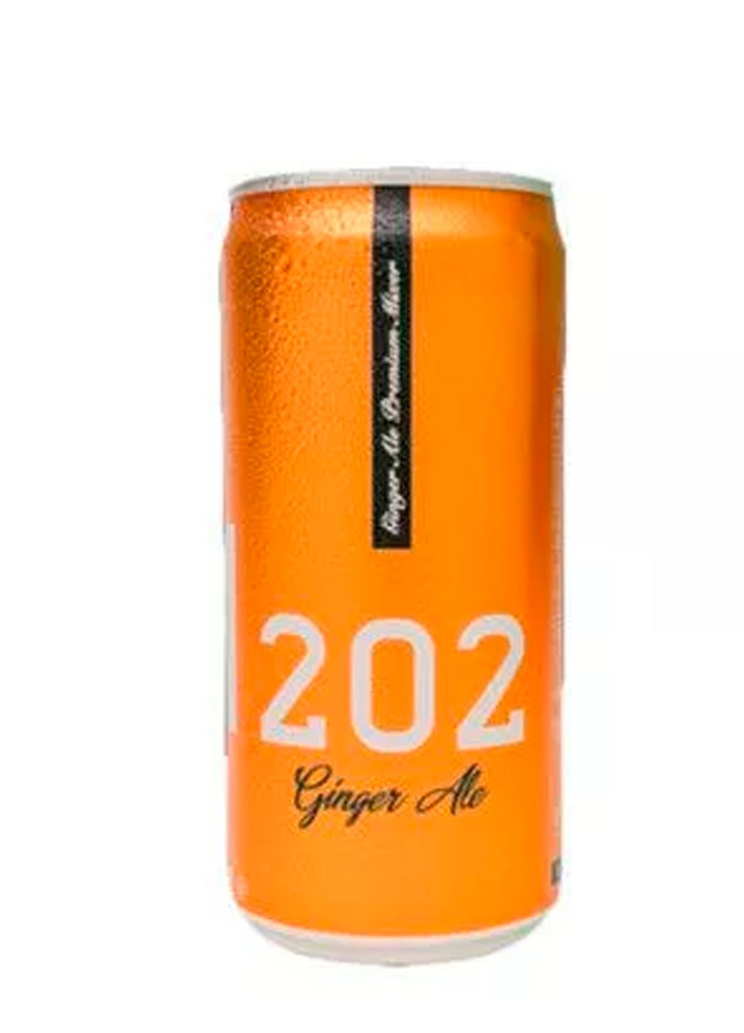 GINGER ALE - 202- LATA - 269 ML