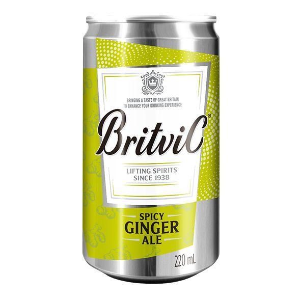 Ginger Ale Britvic - 220 ml