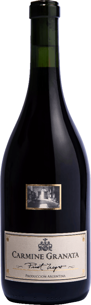 Carmine Granata Pinot Negro
